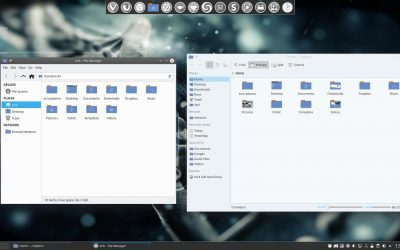 42 setting icons in dolphin and thunar filemanager – why is thunar in Plasma