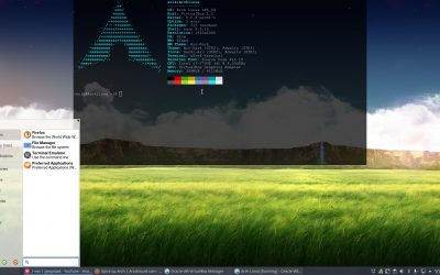 All in one Arch Linux installation BIOS with Xfce – spices