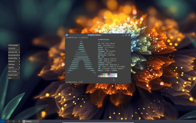 Installation of Arch Linux UEFI with Jwm