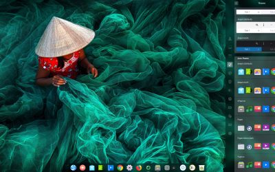 Remove qt5ct on Deepin and Plasma to be able to change and save your icons and themes