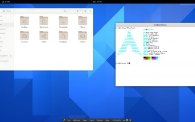 How to install Arch Linux with UEFI and reiserfs – Xorg – Gdm – Wayland issue solved on VirtualBox